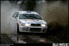 2006 Ardenne Bleue Rally (BEL)