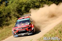 2019 ADAC Rallye Deutschland (WRC)