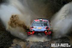 2019 Wales Rally GB (WRC)